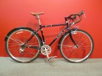 Raleigh Port Townsend 50$679  Was $879